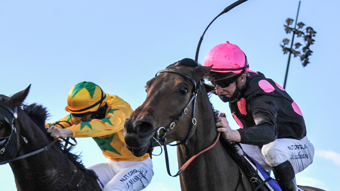 Article heading image for Wodonga Gold Cup Holiday Given Tick Of Approval For The Next 5 Years