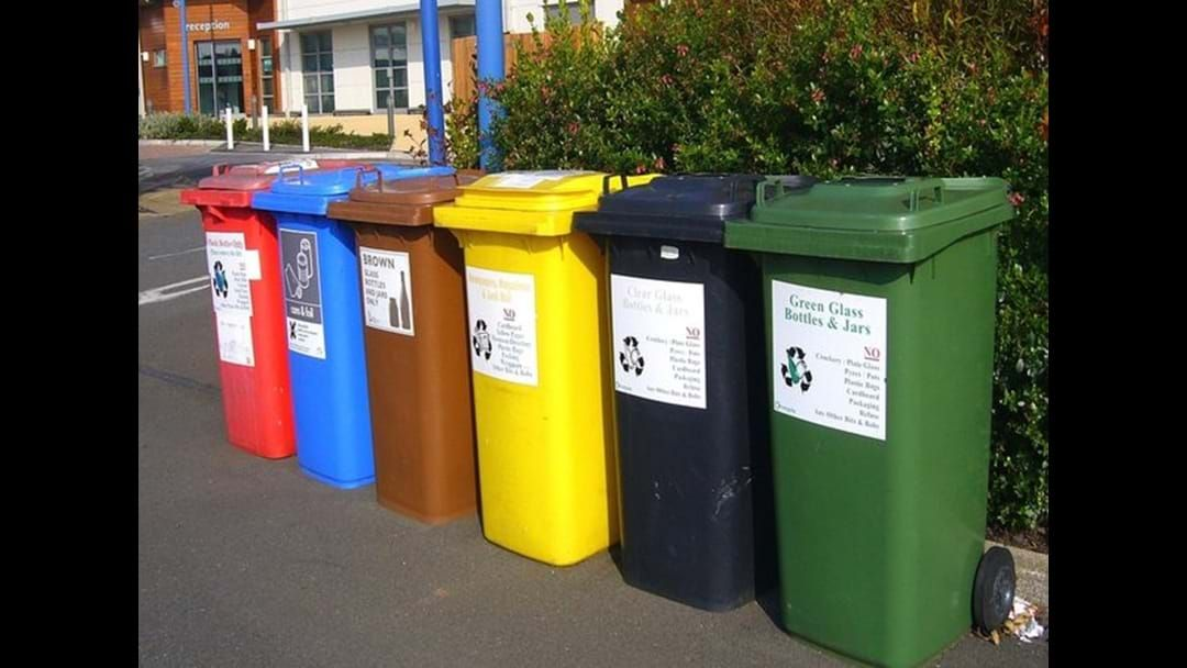 Article heading image for Bin Audit