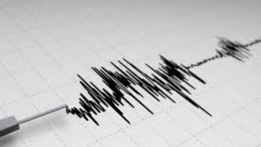 Article heading image for Papua New Guinea Earthquake Felt In Queensland