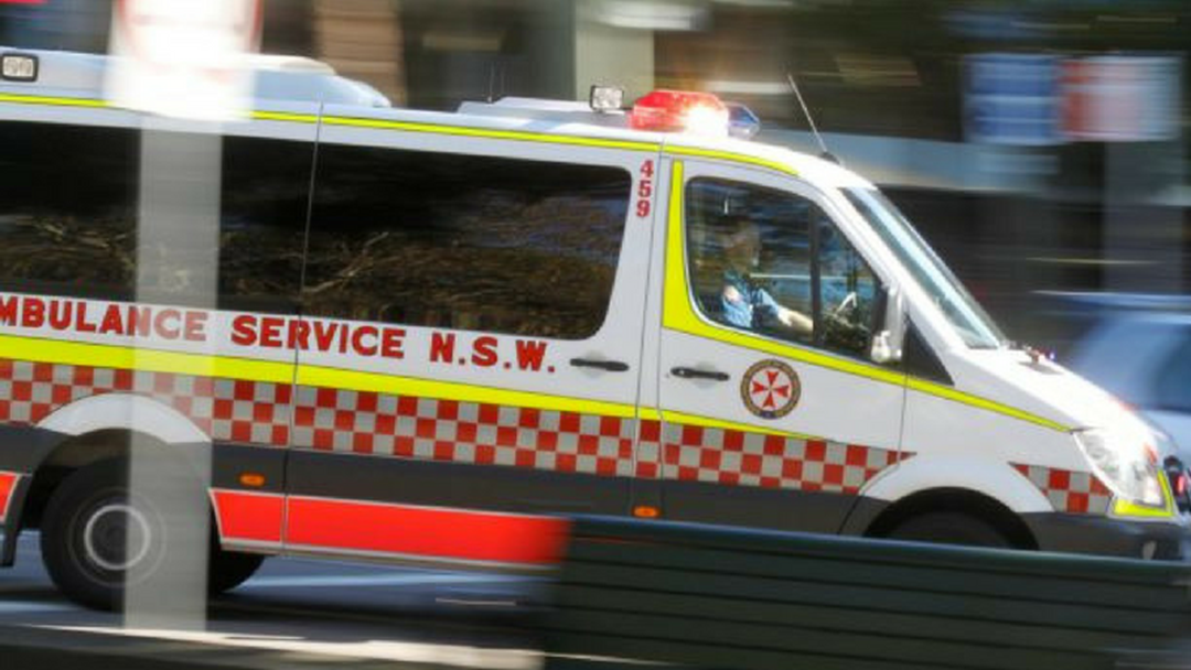 Article heading image for FATAL CRASH: Woman and Dog Killed in Pacific Highway Crash
