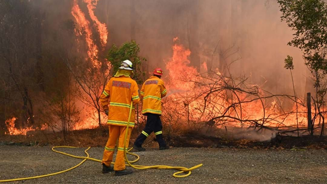Article heading image for List Of NSW Schools Closed Tomorrow Due To Catastrophic Fire Conditions